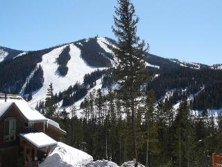 Luxury 5 BR/4.5 Bath-Great for 2 Families/Mt Views - Winter Park vacation rentals