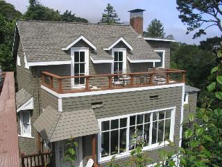 1880's authentic Carriage House - Sausalito vacation rentals