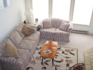 Big Boulder Townhome in Lake Harmony PA - Lake Harmony vacation rentals