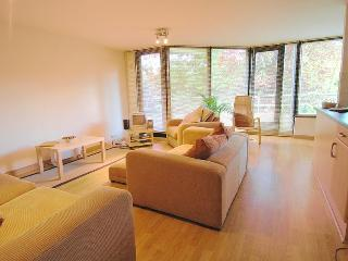 Lovely two bedroom apartment in North Oxford - Oxford vacation rentals