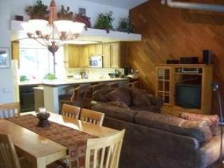 upstairs - Forest Creek #8 Condo with SPA-PET - Mammoth Lakes - rentals