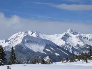 Ski the Rockies by Day and a Cozy Fire at Night!!! - Silverthorne vacation rentals