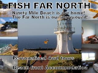90 Mile Beach - Beachfront 2 self contained units - Northland vacation rentals