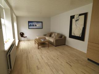 Centre 101 Apartment - Reykjavik vacation rentals