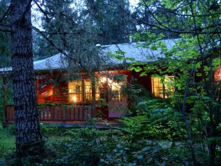 Tamanos - Mount Rainier National Park vacation rentals