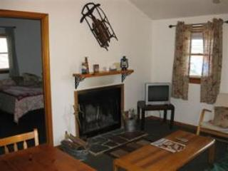 Fireplace in living room - Sun Valley Cottages, Cottage #5 - Weirs Beach, NH - Laconia - rentals