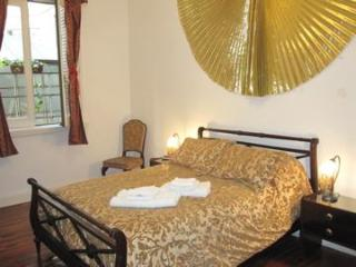 Central, lovely, spacious - 3 double beds, 2 baths - Buenos Aires vacation rentals