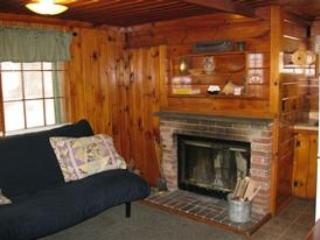 Fireplace - Sun Valley Cottages, Cottage #7 - Weirs Beach, NH - Laconia - rentals