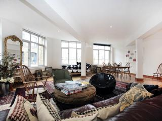 Spacious loft in heart of trendy Shoreditch for 3 - London vacation rentals