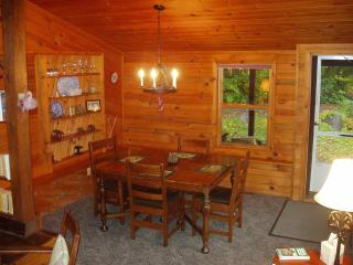 The Icehouse - 1 bedroom cottage on Lake Pleasant - Speculator vacation rentals