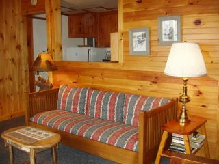 Cubhurst - 2 bedroom cottage on Lake Pleasant - Speculator vacation rentals