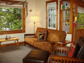 Cherry East -- 2 bedroom cottage on Lake Pleasant - Speculator vacation rentals