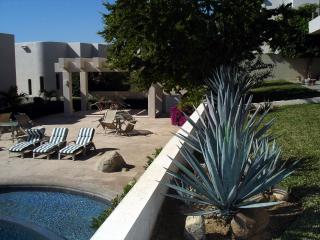 Escape from Winter! 5 Bdrm, Cabo San Lucas, Mexico - Lake Country vacation rentals