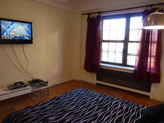 East Village/Greenwich Village Beautiful Three Bed - Manhattan vacation rentals