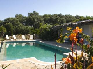 Beautifully restored Cortijo with infinity pool - Vejer De La Frontera vacation rentals