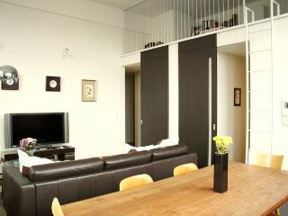 Comfy and large apartment in Central Tokyo - Tokyo vacation rentals