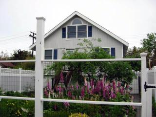 The Flip Flop Inn, Ocean Beach, Fire Island, NY - Ocean Beach vacation rentals