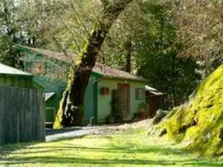 North Face of Willits Creek Cabin - Willits Creek Cabin - Willits - rentals