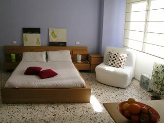 Rome Centre Vatican Silent & Bright Apartment - Lazio vacation rentals