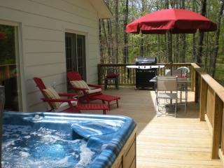 Romantic Cottage View Hot Tub Pet Friendly - Grandview vacation rentals