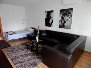 5th Floor Apartment Zagreb - Zagreb vacation rentals