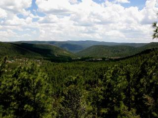 Eagles Nest - Ruidoso vacation rentals