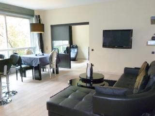 Champs Elysees - Two Bedrooms - Paris vacation rentals