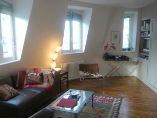 Duplex Concorde - Saint germain - Paris vacation rentals