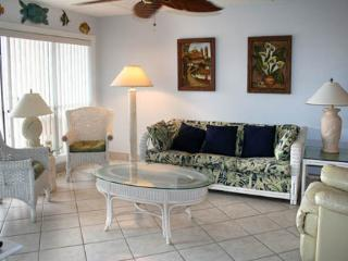BEACHVIEW 202 - South Padre Island vacation rentals
