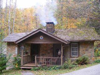 Mountain Brook Cottages - Sylva vacation rentals