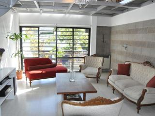 Luxurious Loft in Palermo with Private Terrace! - Buenos Aires vacation rentals
