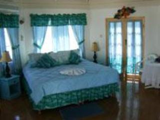 Caribbean Dream  (Villa 1) - Image 1 - Treasure Beach - rentals