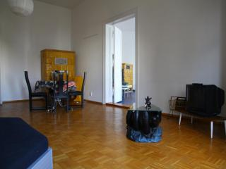 O.F.T. 360 cosy & huge Mitte - Berlin vacation rentals