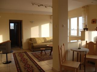 Elegant sunny 1-2 bedroom apts on the Black Sea - Mangalia vacation rentals
