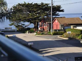Gorgeous Family Beach Home - Ocean Views & Hot Tub - Santa Cruz vacation rentals