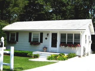Pet Friendly Vacation Cottage - Association Beach - East Falmouth vacation rentals