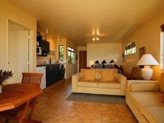 Ahipara Beachfront - Stylish apartments on ocean - Ahipara vacation rentals
