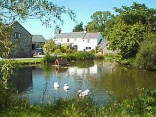 Primrose cottage near Abergele-Snowdonia and coast - Abergele vacation rentals