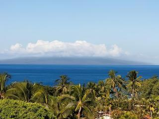 Best Views in Palms of Wailea. 25% off Low Season! - Kihei vacation rentals