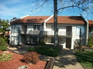 Adventure Lake Ozark Condo - Lake Ozark vacation rentals