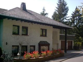 Eifel Apartments - Apartment Charlie - Gerolstein vacation rentals