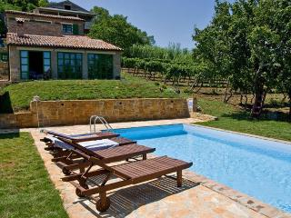 Villa Aroma stone built house with swimming pool - Motovun vacation rentals