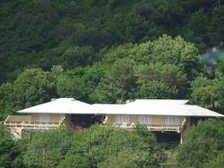 Fauvelle, Spring Bay, Bequia, WI. 5 bed/bath villa - Port Elizabeth vacation rentals