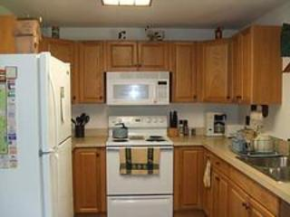4 Bdrm Spacious Mount Snow Rental- Christmas Avail - West Dover vacation rentals