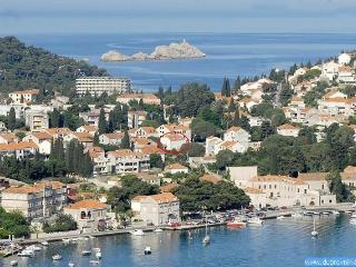 Apartment Radic 2 - Dubrovnik vacation rentals