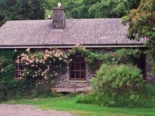 Cottage - Cottage at Lakefield, Caragh Lake, Co. Kerry - Caragh Lake - rentals