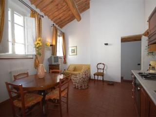 Charming apartment in the city centre of Lucca - Lucca vacation rentals
