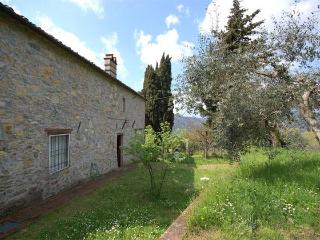 Lovely cottage in Tuscan style - Lucca vacation rentals