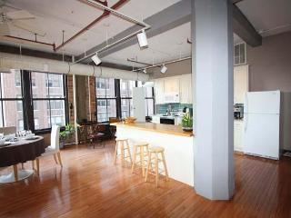 Exceptional 2BR Gorgeous Downtown Loft - Chicago vacation rentals