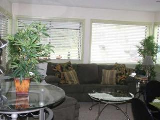 Luxurious Condo- 1 Block from The Beach - Myrtle Beach vacation rentals